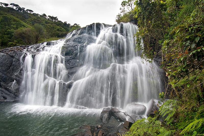 Viajar a Sri Lanka 06