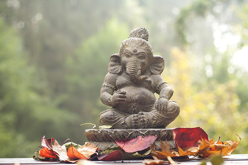 Viajar a Sri Lanka 01